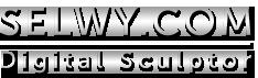 Selwy Logo