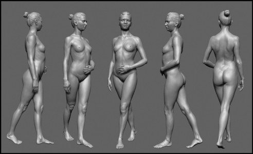 Анатомия и эротика женщины